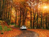 Jak przygotować samochód do jesieni? Oto 6 rzeczy, o których musisz pamiętać.
