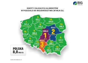 BIG InfoMonitor: Dłużnicy alimentacyjni są nam winni ponad 8 mld zł