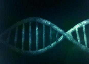 Badania genetyczne jako ważny element profilaktyki nowotworowej