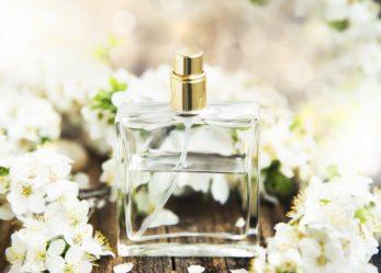 Jakie perfumy kwiatowe do Ciebie pasują? Poznaj najbardziej romantycznej zapachy.